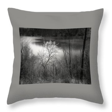 Throw Pillow featuring the photograph Emlenton by EDi by Darlene
