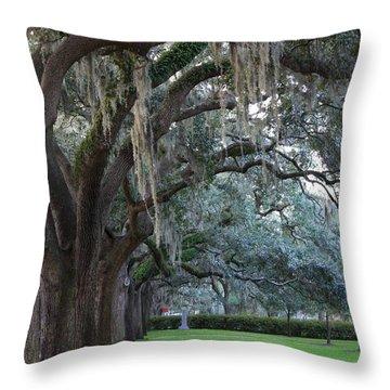 Emmet Park In Savannah Throw Pillow
