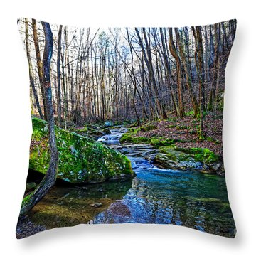 Emory Gap Branch Throw Pillow