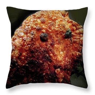Empanada Man Throw Pillow