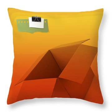 Outside Empty Box Throw Pillow