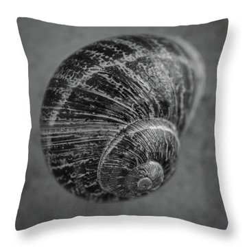 Empty House Throw Pillow