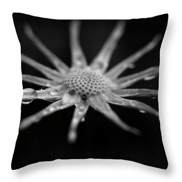 Empty Throw Pillow