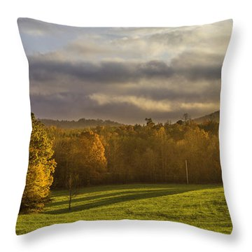 Empty Pasture - Cows Needed Throw Pillow
