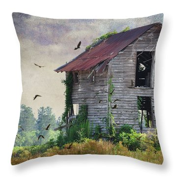 Empty Spaces Throw Pillow by Jan Amiss Photography