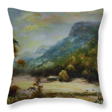 Emu Plains, Grampians Throw Pillow