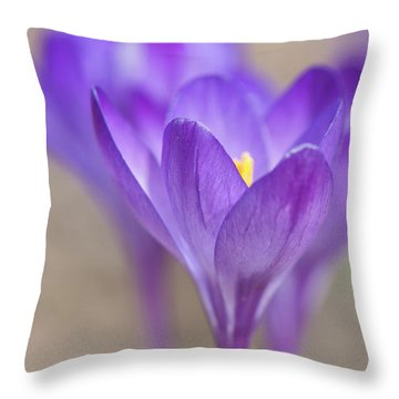 En Attendant Le Printemps Throw Pillow
