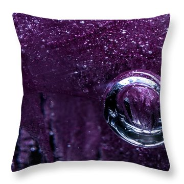 Throw Pillow featuring the photograph Encased by Eric Christopher Jackson