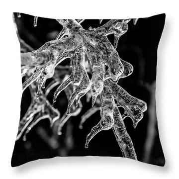 Encased Throw Pillow