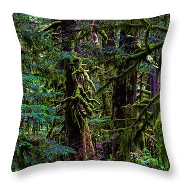 Enchanted Throw Pillow by Alana Thrower