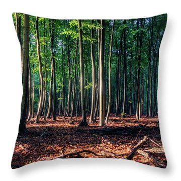 Throw Pillow featuring the photograph Enchanted Forest by Dmytro Korol