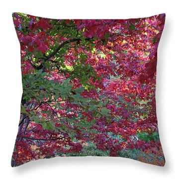 Enchanted Forest Throw Pillow by Doris Potter