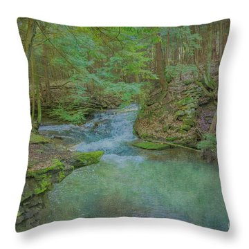 Throw Pillow featuring the digital art Enchanted Forest One by Randy Steele