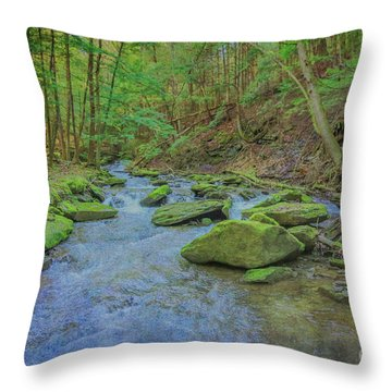 Throw Pillow featuring the digital art Enchanted Forest Three by Randy Steele