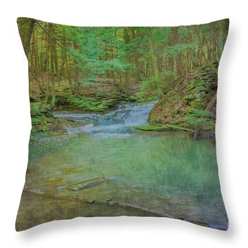 Throw Pillow featuring the digital art Enchanted Forest Two by Randy Steele
