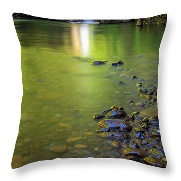Enchanted Gorge Reflection Throw Pillow by David Gn