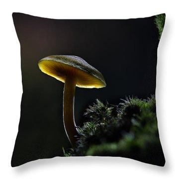 Enchanted Mushroom Throw Pillow by Dirk Ercken