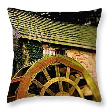 Enchanted Throw Pillow by Rodney Lee Williams