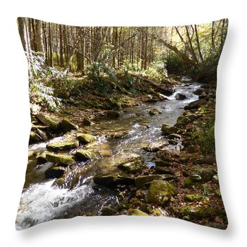 Enchanted Stream - October 2015 Throw Pillow