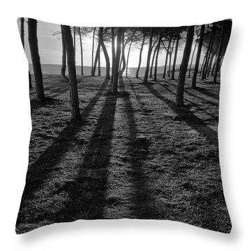 Enchanted Sunset In Monochrome Throw Pillow