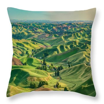 Enchanted Valley Award Winner Throw Pillow