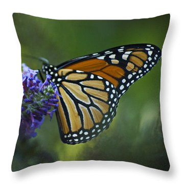 Enchanting Monarch Throw Pillow by Elsa Marie Santoro