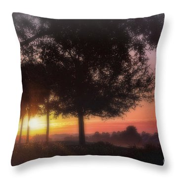 Enchanting Morning Sunrise Throw Pillow