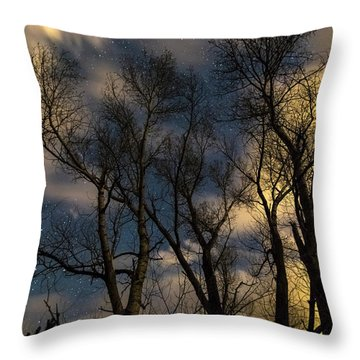Enchanting Night Throw Pillow by James BO Insogna