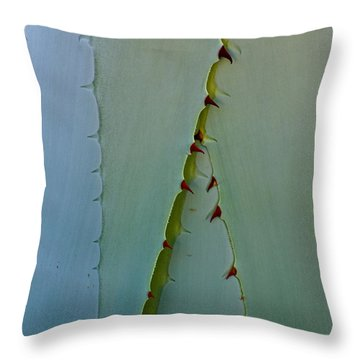 Encinitas Century Throw Pillow