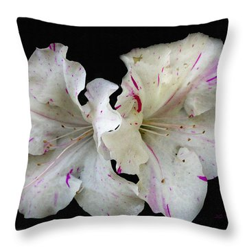 Encore Azaleas Throw Pillow by James C Thomas