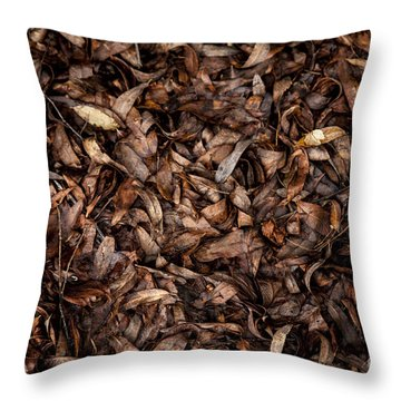 End Of A Season Throw Pillow by Serene Maisey