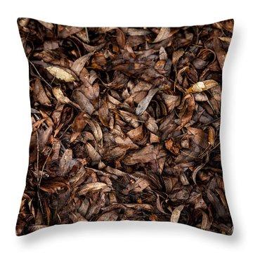 End Of A Season Throw Pillow