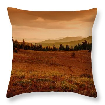 Throw Pillow featuring the photograph End Of Day by Frank Wilson