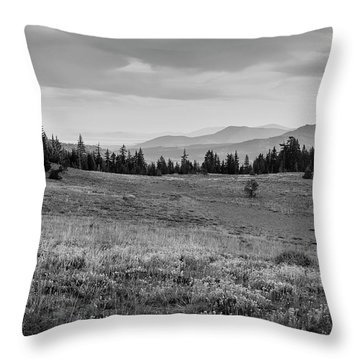 Throw Pillow featuring the photograph End Of Day In B W by Frank Wilson