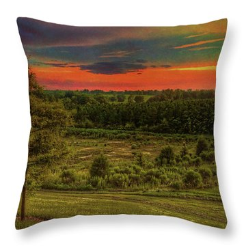 Throw Pillow featuring the photograph End Of Day by Lewis Mann