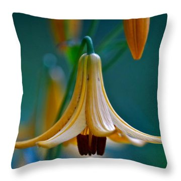 End Of June Throw Pillow by Nathan Larson