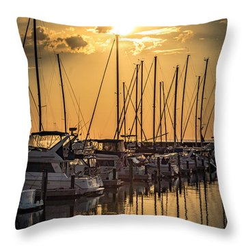 End Of Season Throw Pillow by James  Meyer