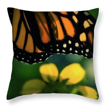 End Of Summer Monarch Throw Pillow