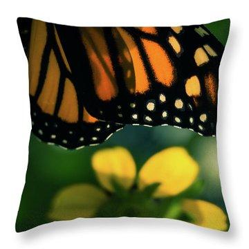 End Of Summer Monarch Throw Pillow