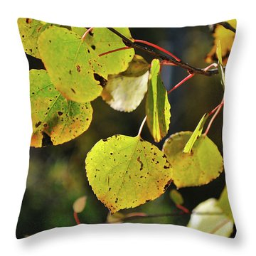 End Of Summer Throw Pillow