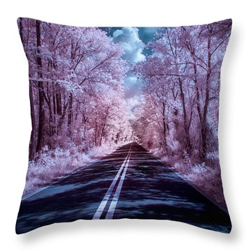 Throw Pillow featuring the photograph End Of The Road by Louis Ferreira