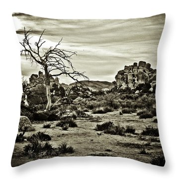Throw Pillow featuring the photograph End Of The Trail by Tom Vaughan