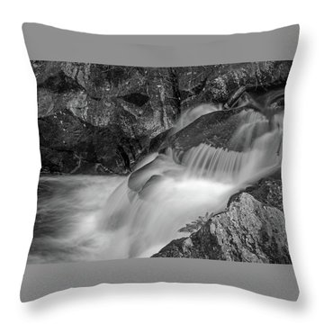 Enders Falls 2 Throw Pillow