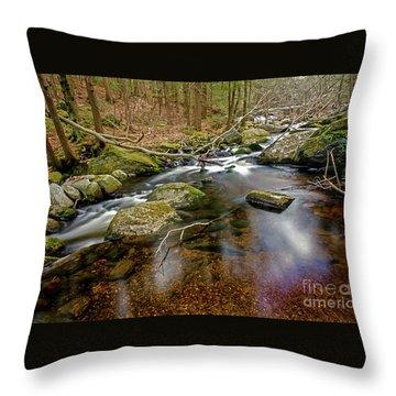 Enders Falls Throw Pillow