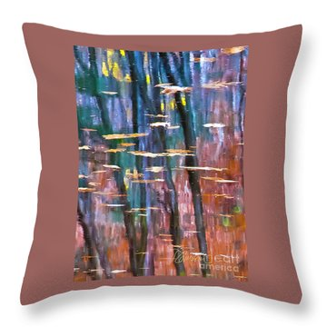 Enders Reflection Throw Pillow