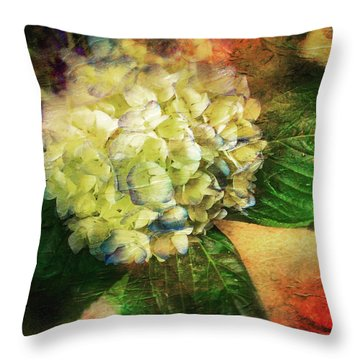 Endless Summer Throw Pillow by Colleen Taylor