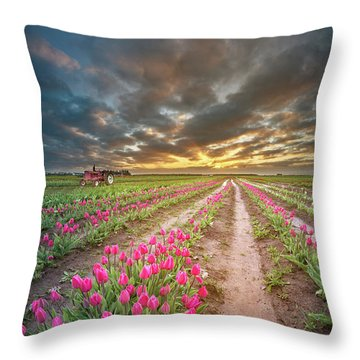 Throw Pillow featuring the photograph Endless Tulip Field by William Lee