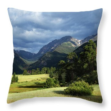 Endovalley Aftenoon Throw Pillow