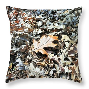 Throw Pillow featuring the photograph Endurance Of A Leaf by Kay Gilley