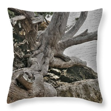 Endure Throw Pillow by Rebecca Hiatt